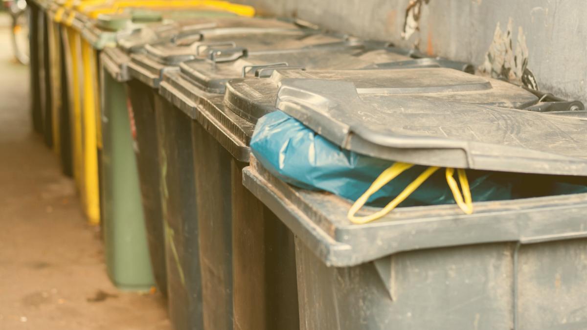 Erschreckend: 40 Prozent aller Lebensmittel landen unverdorben im Müll
