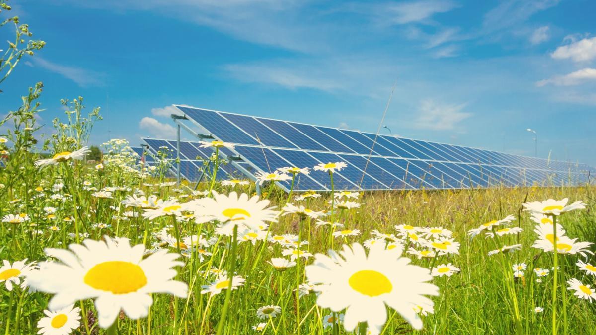 Ideen für grünes Energiesystem gesucht: Einreichfrist endet am 20. August