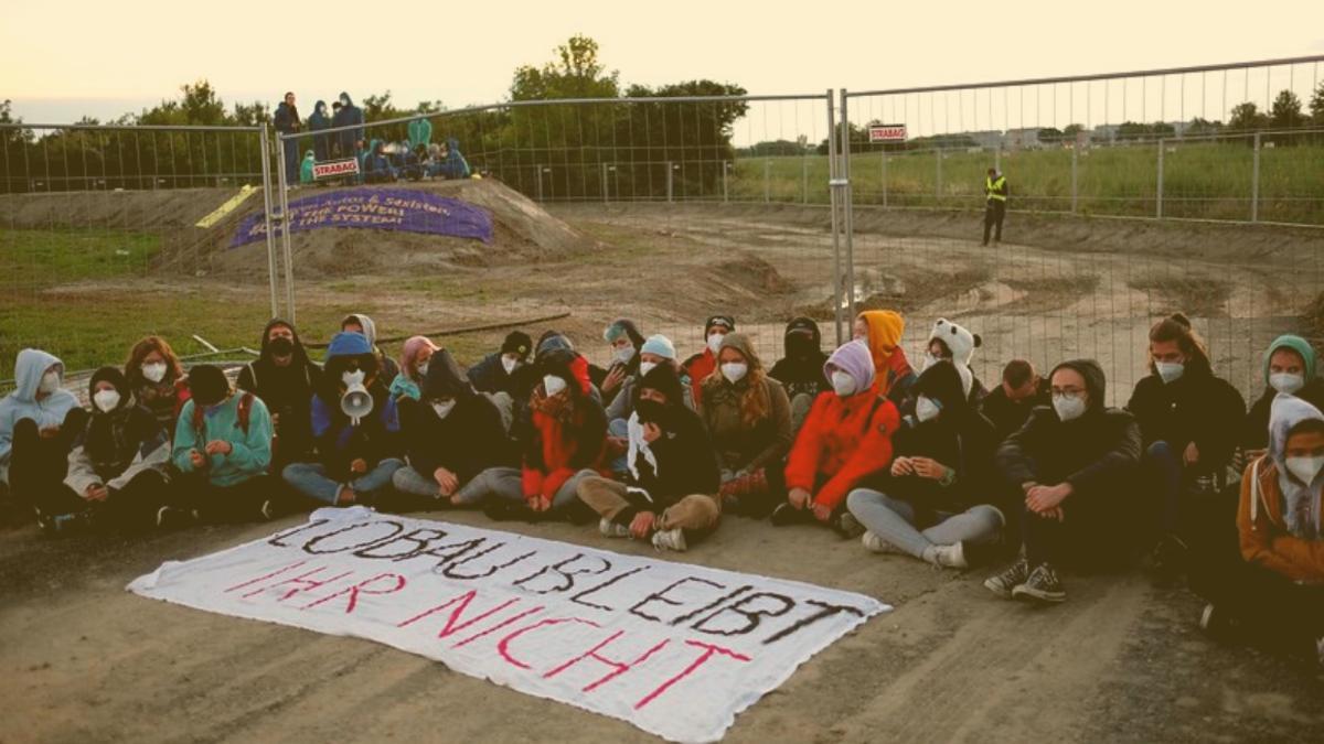 Bauarbeiten gestoppt: Hier in Österreich wird jetzt die Zerstörung der Natur blockiert