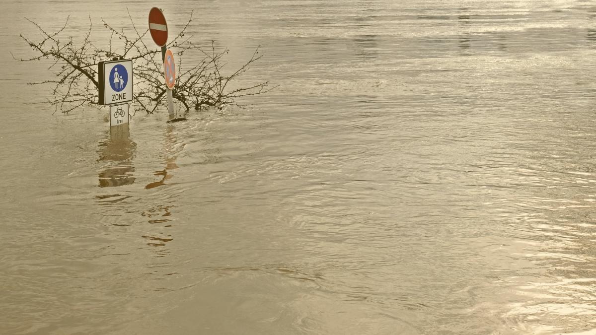 Aktuelles zum Hochwasser: So gefährlich ist die Situation derzeit wirklich