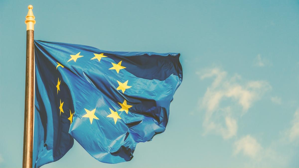Die Mär vom Klimaschutz: Wie 100 Milliarden an EU-Agrarförderungen versickern