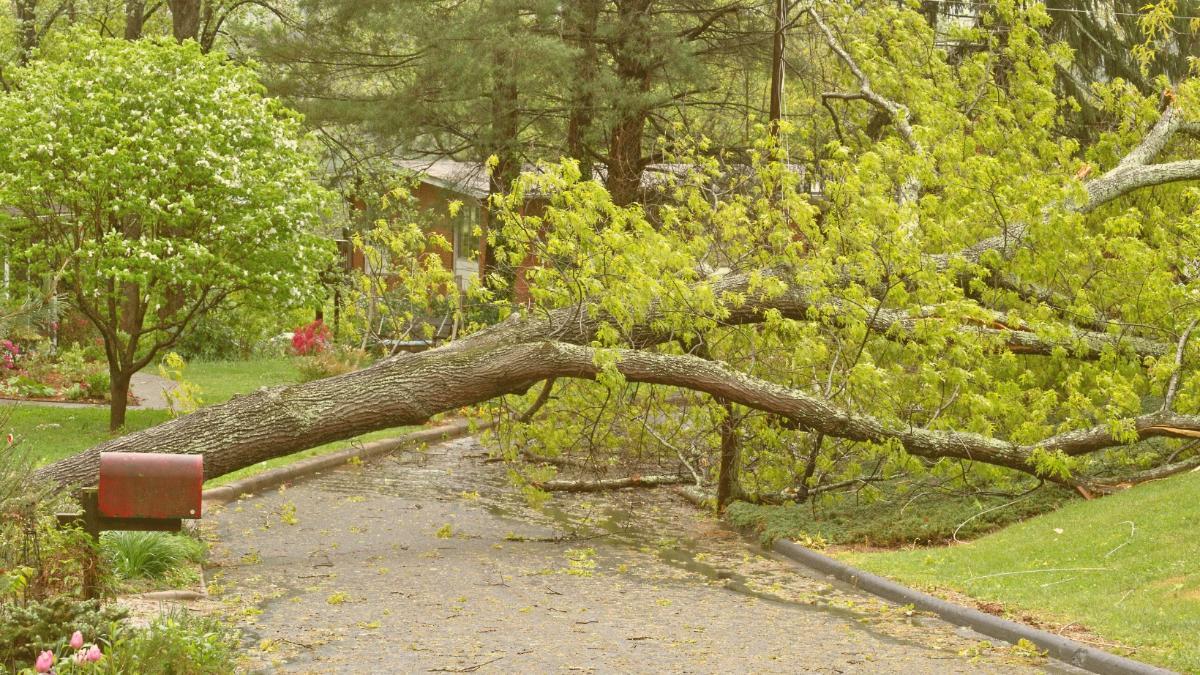 Unwetter-Warnung: Hier gibt's jetzt Starkregen und extremen Sturm