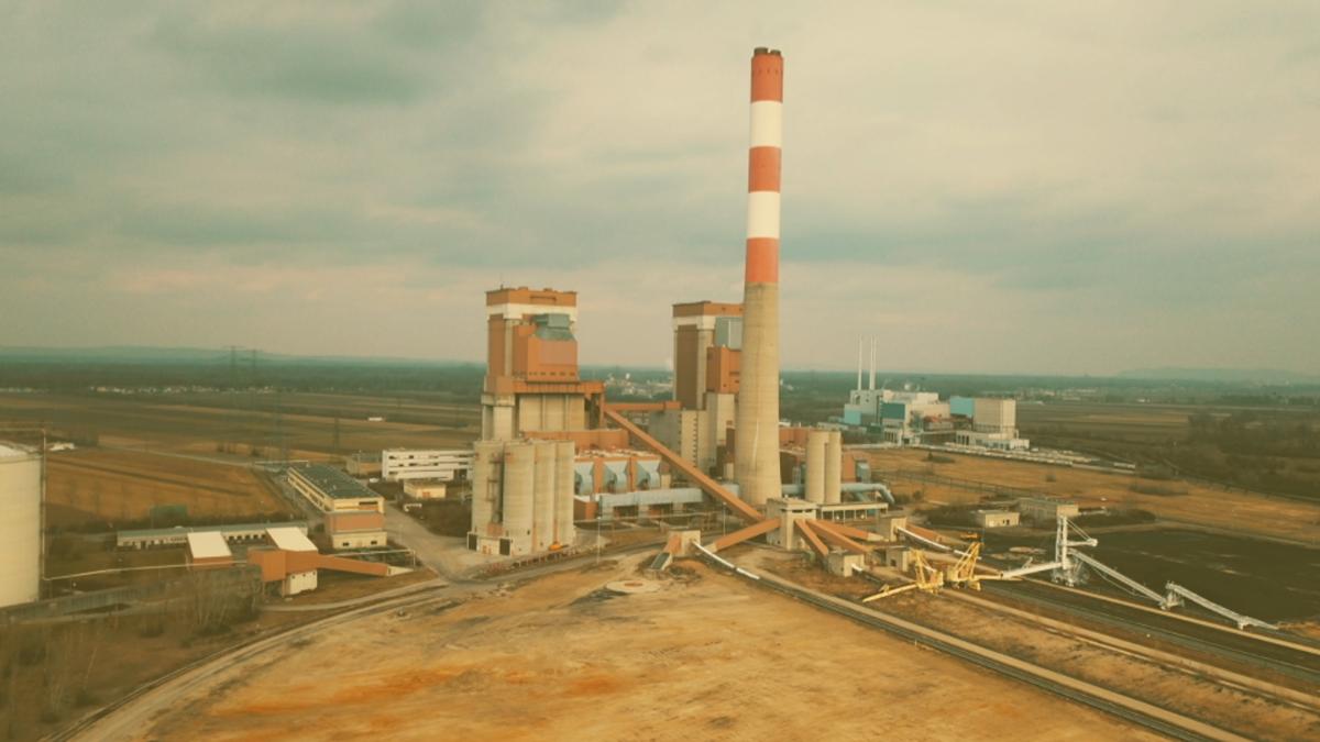 Die unglaubliche Artenvielfalt rund ums Kohlekraftwerk