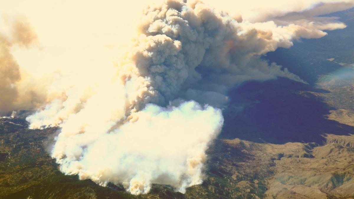 Waldbrände erzeugen Wetter: So dramatisch wüten die Feuer derzeit weltweit