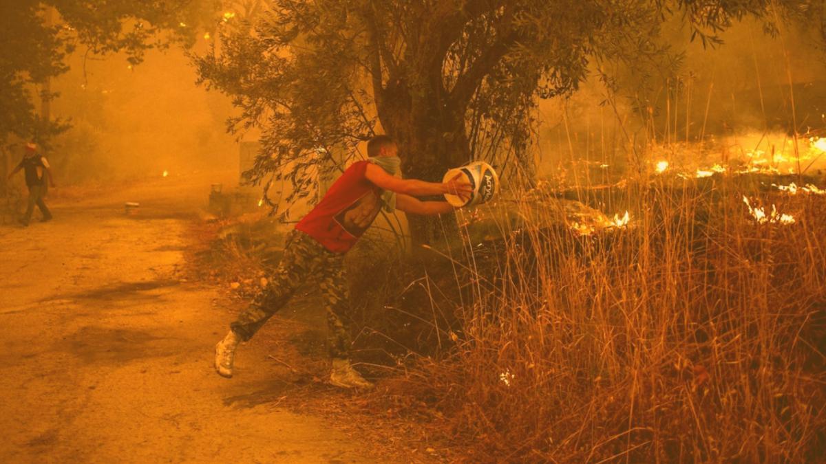 Brandstifter oder Klimawandel: Wer wirklich für die Brände verantwortlich ist