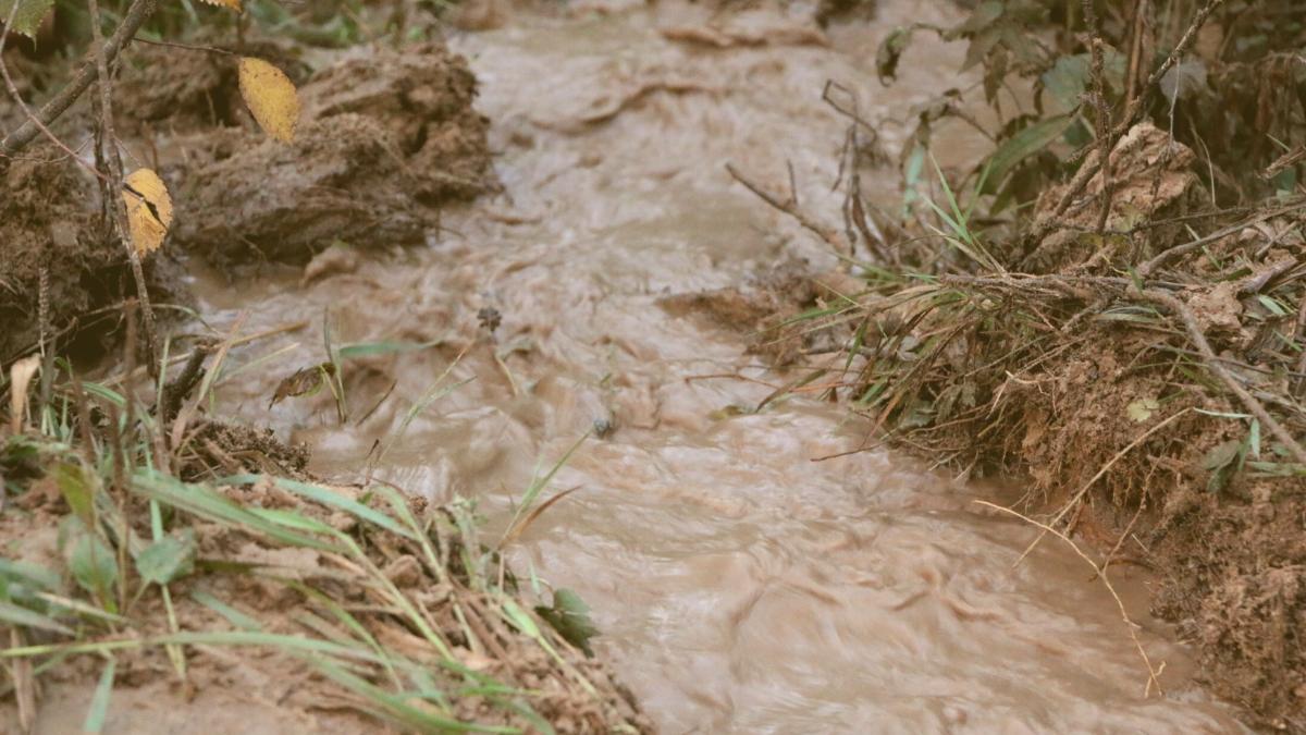 Neue Studie warnt: Hier kommt es jetzt immer öfter zu Starkregen
