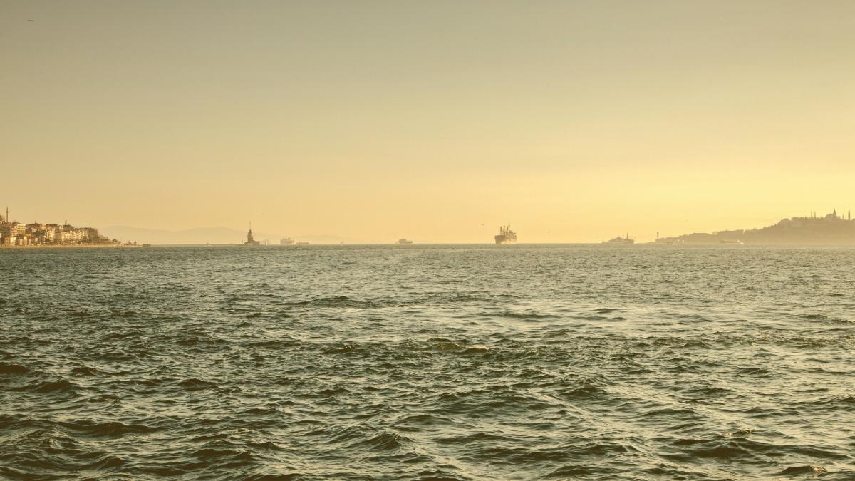 Marmarameer stirbt: Industrie-Abwasser verursachen Umweltkatastrophe