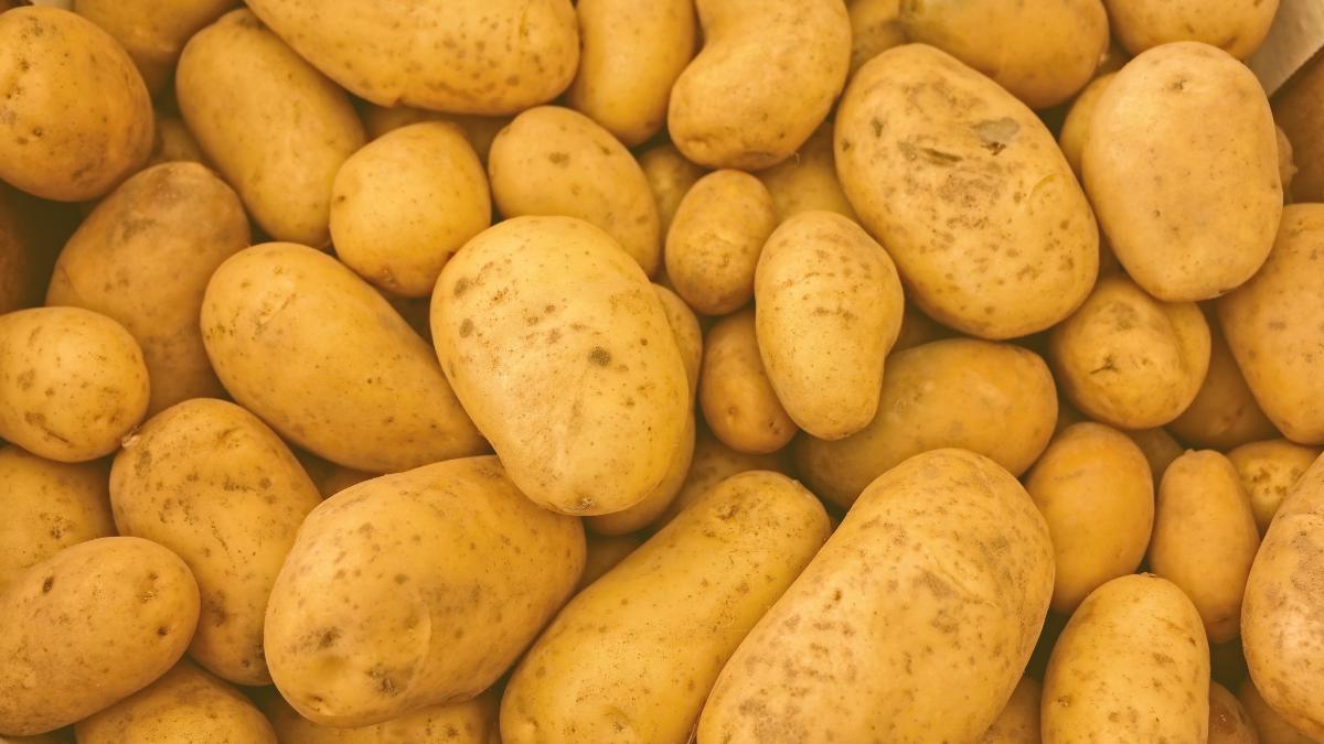 Kartoffeln aus Ägypten: Proteste vor Denn's Biomarkt
