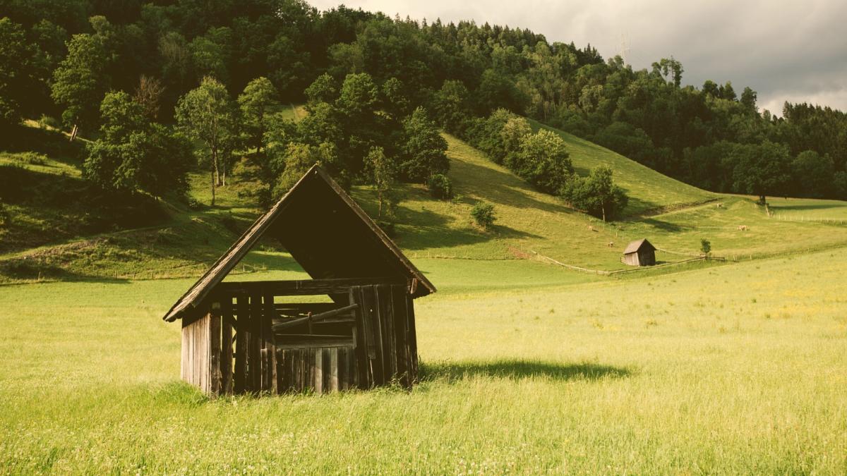 """""""Armutszeugnis"""": Einkünfte in Landwirtschaft um 20 Prozent niedriger als vor 10 Jahren"""
