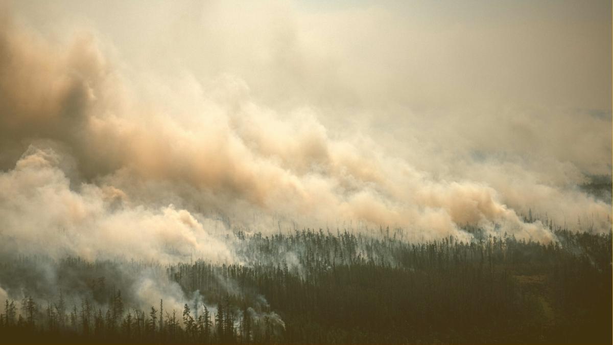 Grenzwerte 20-fach überschritten: Hier ist die Luft jetzt extrem gesundheitsschädlich