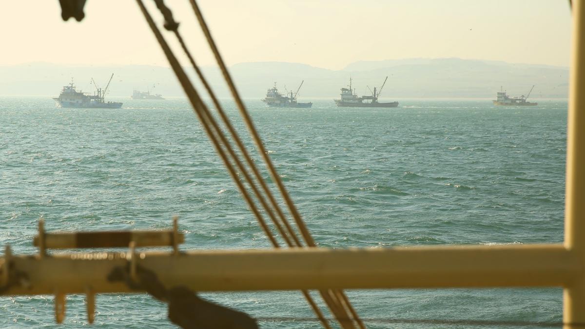 Chinesischer Raubzug durch Weltmeere: 17.000 Schiffe plündern Fischbestände