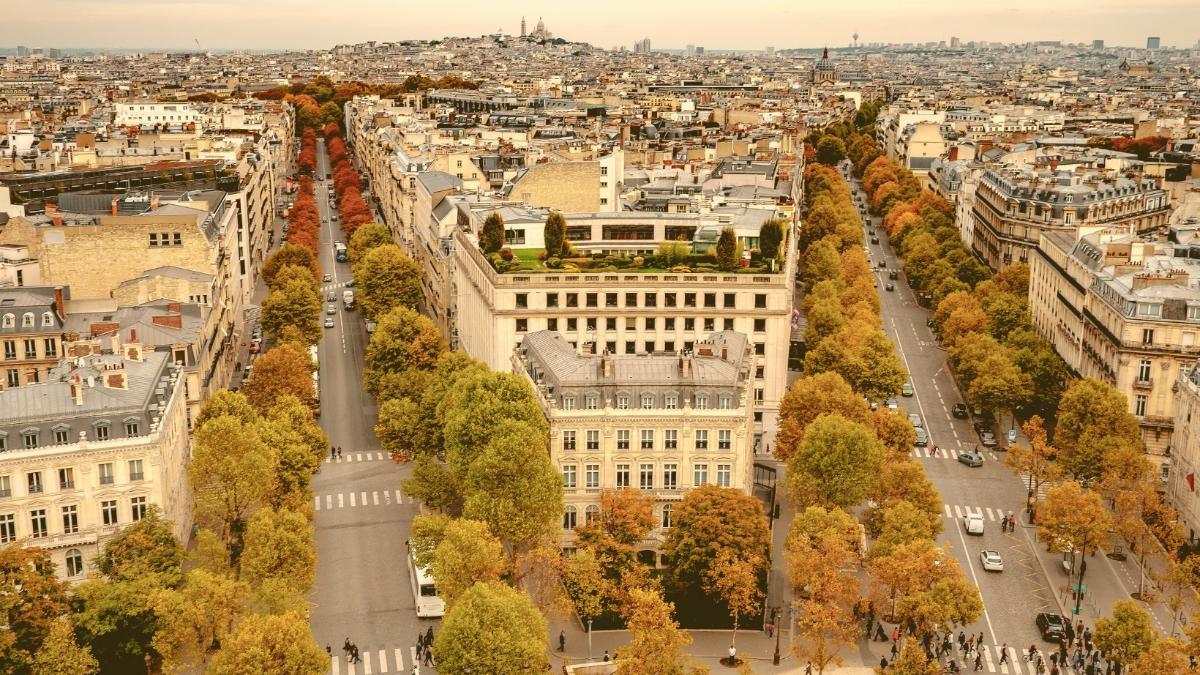 Eindrucksvolle Offensive: 170.000 Bäume werden in Paris gepflanzt