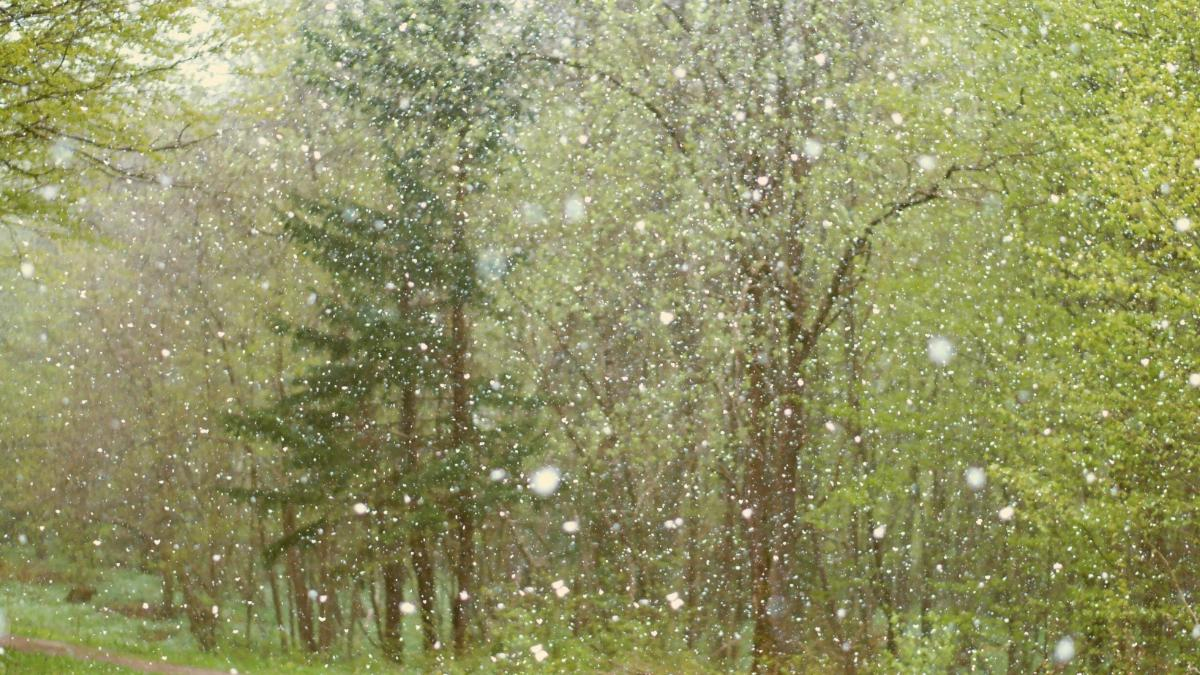 Starke Unwetter drohen: Hier in Österreich kommt es heute zu Hagelstürmen