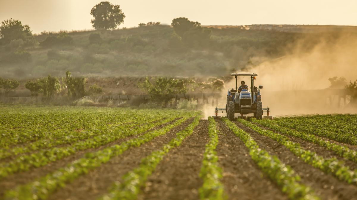 Ernährung sichern und Klima retten